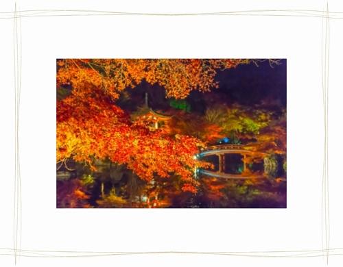 2.京都紅葉.jpg